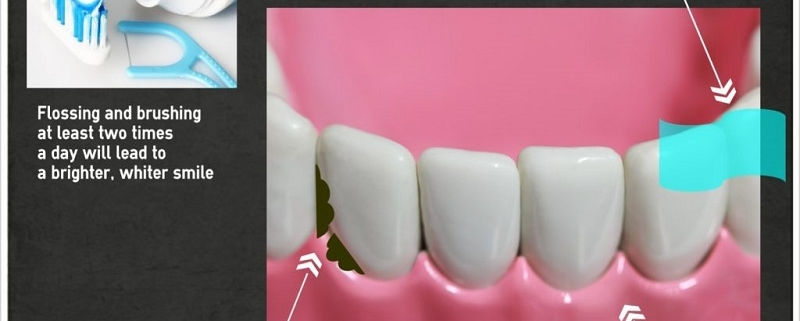 dr medina dentist dental care graphic